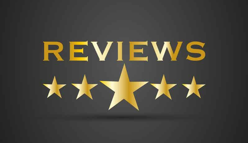 online reviews - BlueInk Review of The Rival